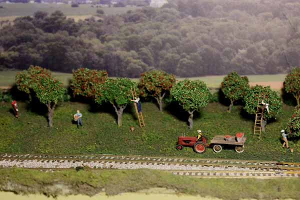 ho model apple orchard