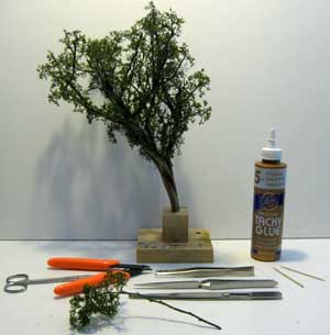 modelling foreground trees
